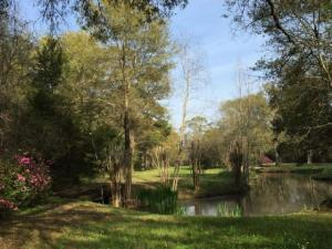 A photo of the pond at the wedding venue, Woodlawn Chapel, located near Lafayette, Louisiana.